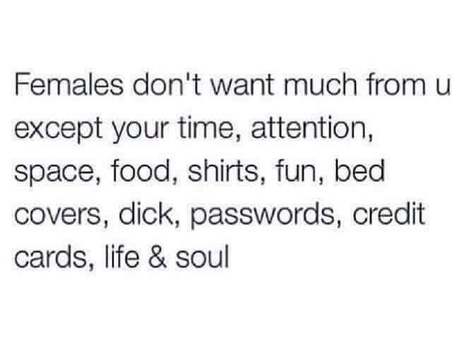 Female Memes - Females don't want Much from u except time, attention, space, food, fun, bed covers, dick, password, credit cards, life soul