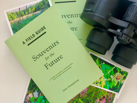 Souvenirs for the Future at Dominik Mersch Gallery 2019 - see the  virtual gallery tour here: