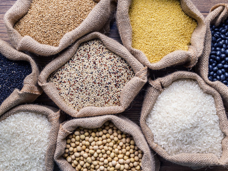 Vegan on a Budget Part 2: Grains, Starches, Legumes & Protein