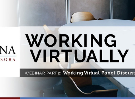 CANA Working Virtually Webinar Part 2: Panel Discussion