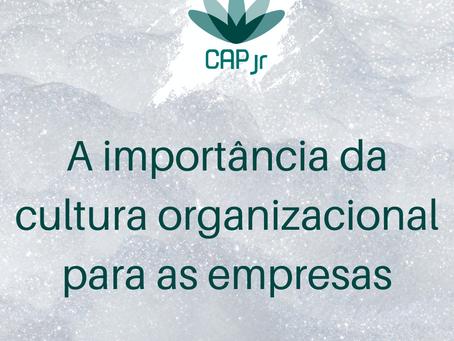A importância da Cultura Organizacional para as empresas