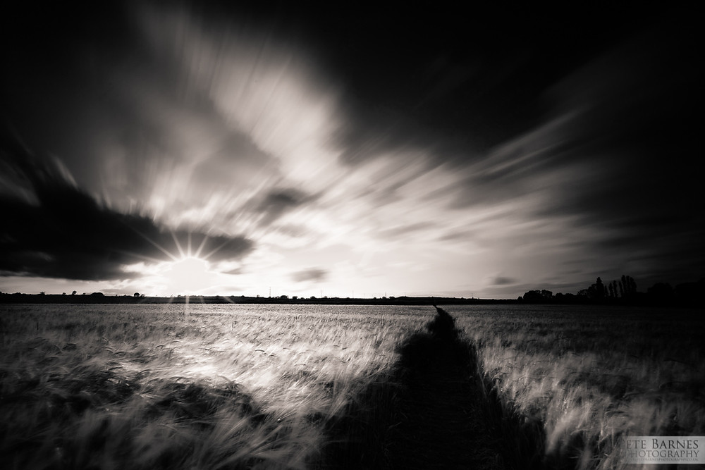 Black and White landscape photo of a path through a field