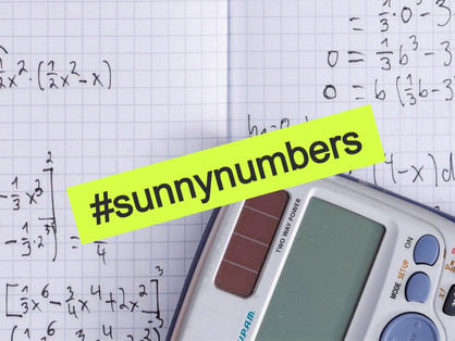 What is a Sunny Number?
