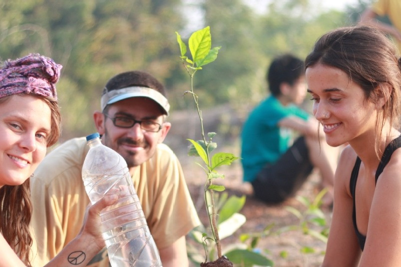 3 volunteers planting a plant sapling and watering it on a field