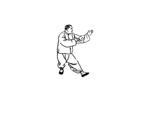 Yang Style Taiji  杨式太极拳