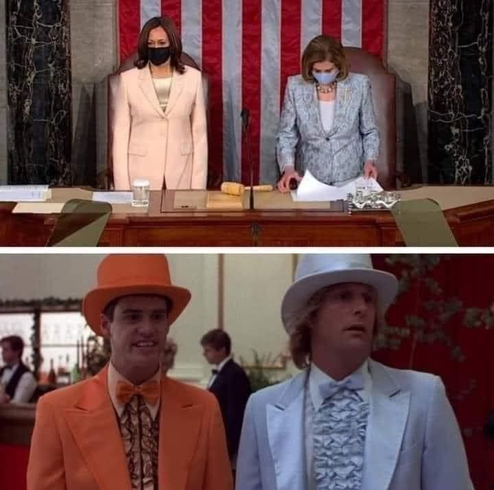 Kamala Harris & Nancy Pelosi dressed like Dumb & Dumber Meme & Many More Kamal & Pelosi Memes!