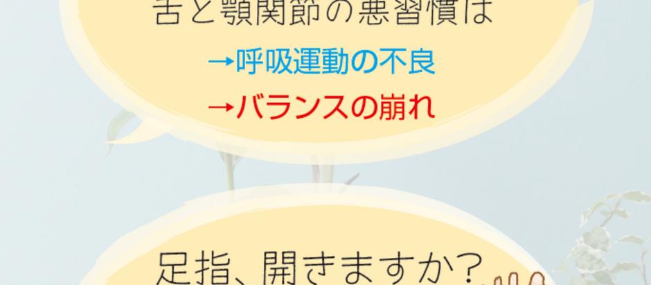 ブリービクス研究会サイトリニューアル!