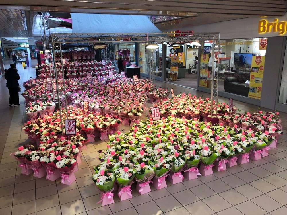 thebigflower.shop