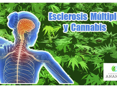 Esclerosis Múltiple y Cannabis