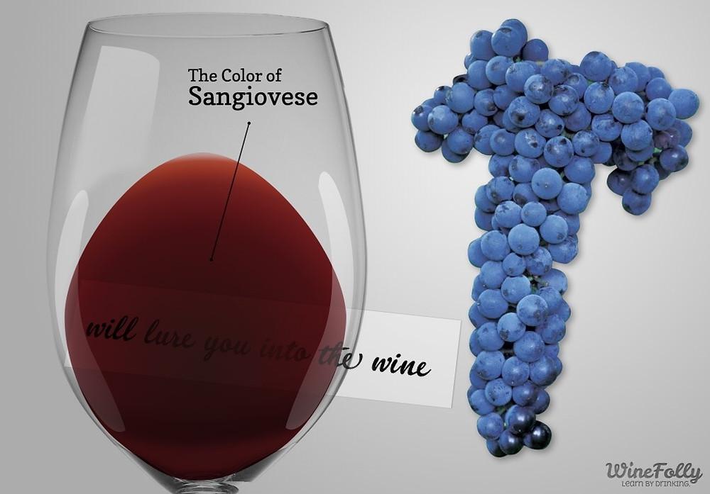 #winefolly