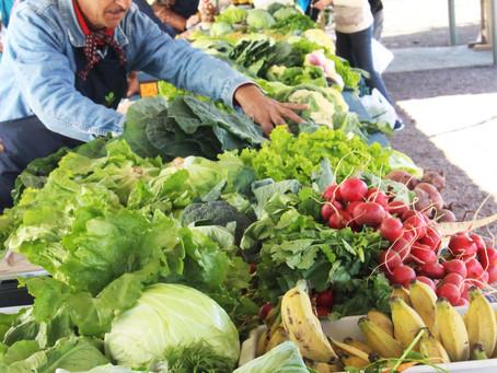 Feira de alimentos saudáveis atende em novo horário