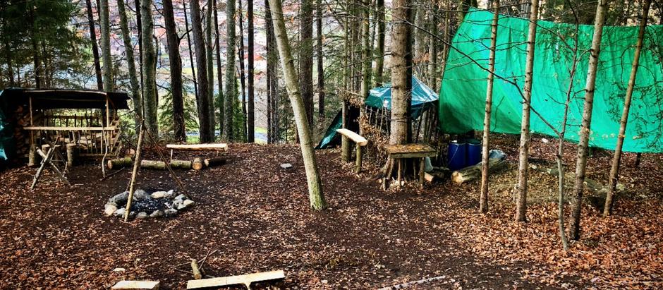 Kompetenzorientiertes Lernen im Waldschulzimmer
