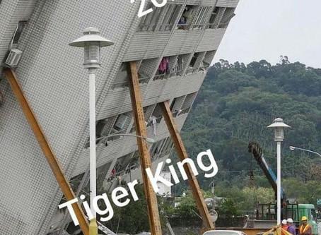 "2020 vs. ""Tiger King: Murder, Mayhem and Madness"""