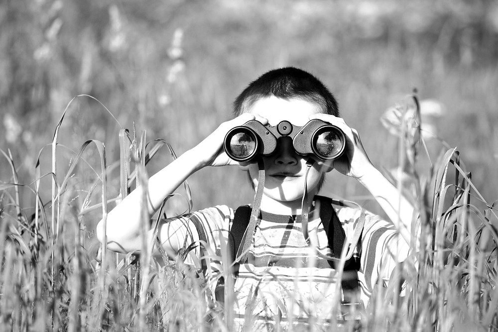 Child in green field holding binoculars and exploring surroundings