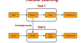 Transfer Learning & Computer Vision Assignment Help.