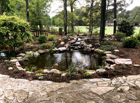 Koi Ponds in Aiken, SC