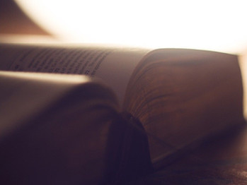 STUDY: The Bible is consistently the most disgusting thing in hotel rooms.