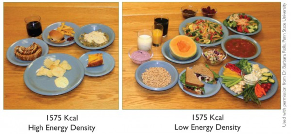 what energy density should my diet have