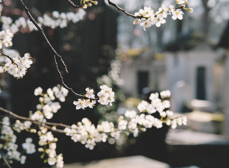 Planning Your Own Funeral? Here's How to Get It Right