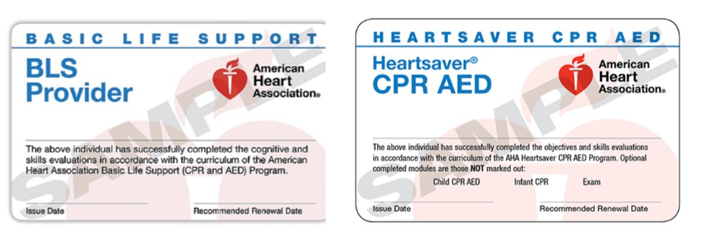 bls cpr difference aed pulse