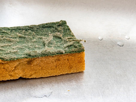 Why You Should Ditch Your Cleaning Sponge