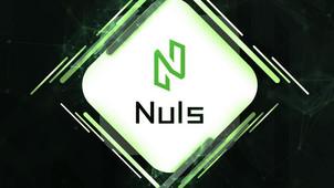 NULS Blockchain, Proof of Credit (POC) Comment Installer un wallet sur son PC [Tutoriel]