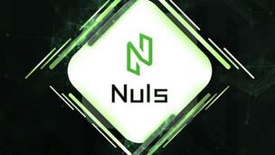 NULS Blockchain, Proof of Credit (POC)|Comment Installer un wallet sur son PC [Tutoriel]
