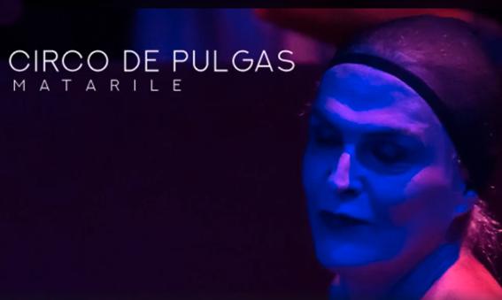 Circo de Pulgas, en la foto Celeste