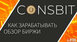 Биржа Coinsbit: обзор и возможности пассивного дохода