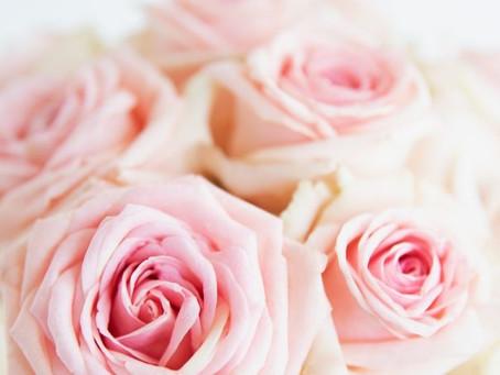 La Rosa: benefici per la tua pelle