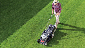 Lawn and Landscape Dos and Don'ts to Increase Property Value