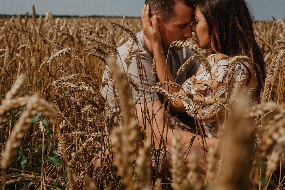 love-story photo session in wheat field with sunny weather in Sheffield and Manchester