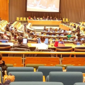 ISEA재단은 뉴욕 유엔 본부에서 ECOSOC 총재 소집 FfD포럼 참가 (5월 22-25일)