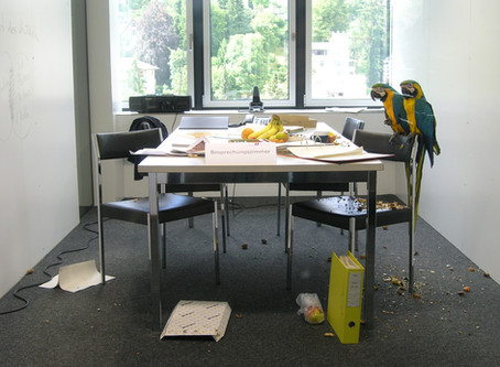 Facilitation - wie Sie Ihre Mitarbeiter*innen aktiver einbinden können