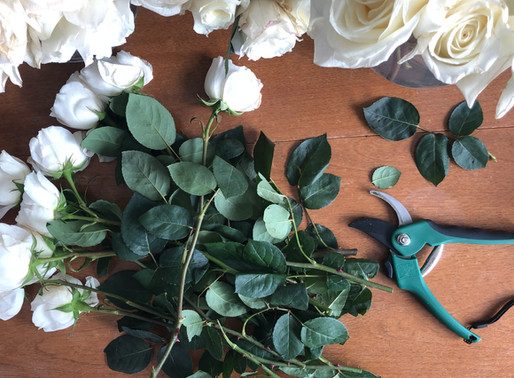 Processing Garden Roses: Sometimes Less Is More