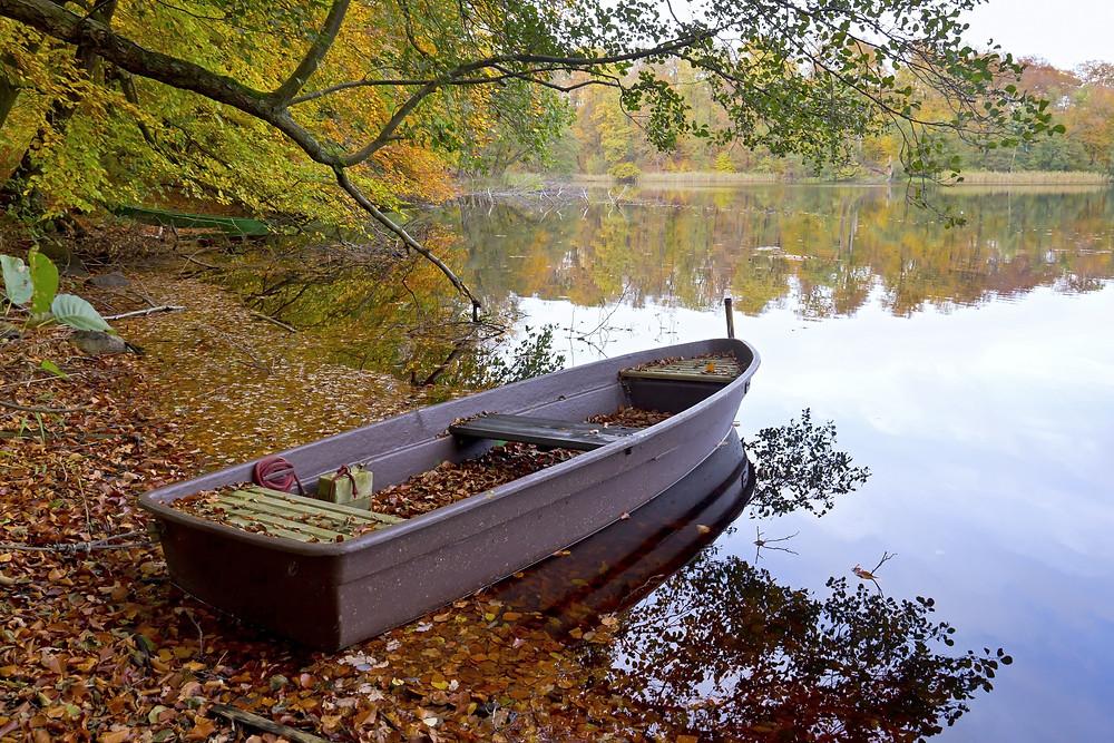 Boat on lakeshore full of leaves