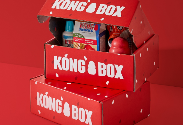 KONG BOX - Monthly Dog Box Subscription Service (FULL REVIEW)