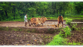 Why farmers are still backward in terms of monetary in India?