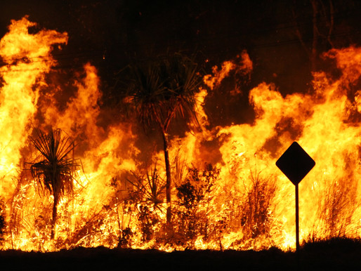 Australia, your country is burning – dangerous climate change is here with you now