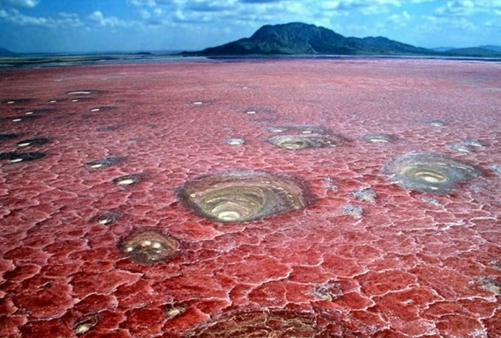 lac Natron en Tanzanie croutes de sel