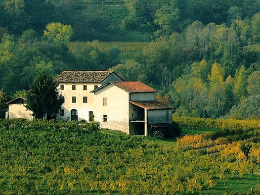 Wine & Poetry at Gregoletto Winery