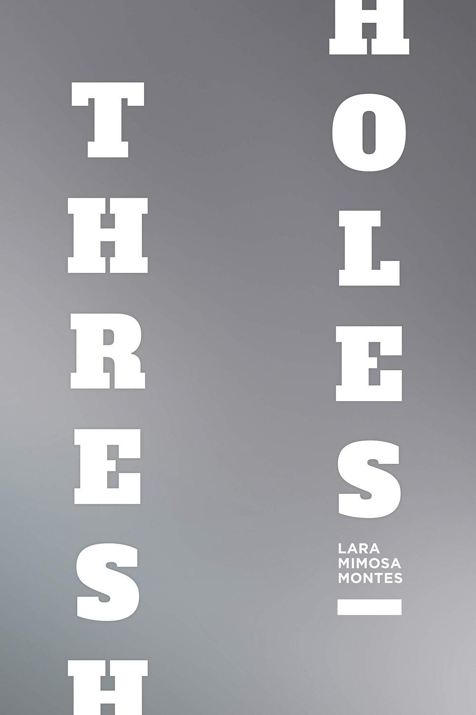 Thresholes by Lara Mimosa Montes thebookslut book reviews