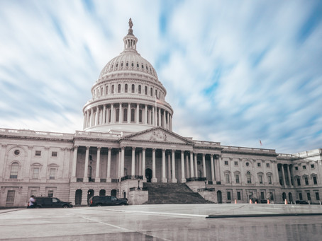 The PPP or the Credit for Employer Federal Payroll Taxes?