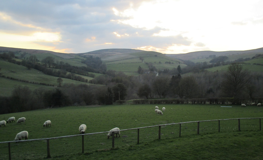 View from Powys Pods