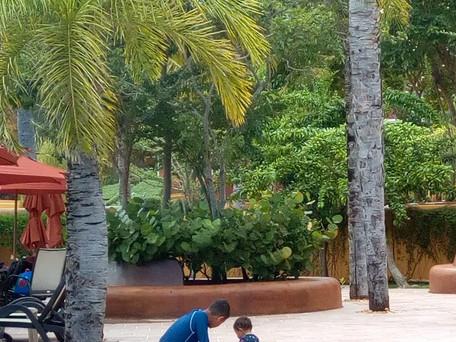 Cuarto día, de CDMX a Cancún