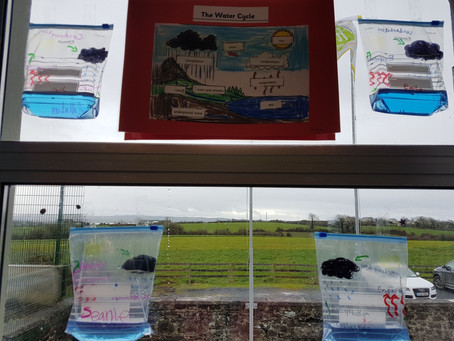 We learned all about the water cycle. We really enjoyed making our own water cycle in a bag.