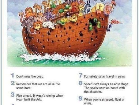 """""""Everything I need to know in Life, I Learned from Noah's Ark"""""""
