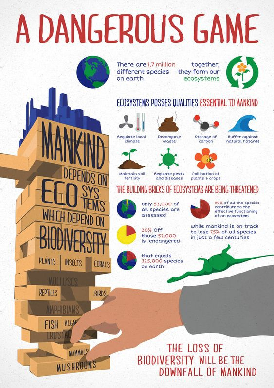 Biodiversity loss risk caused by climate change and global warming. A dangerous game. Infographic. Climate Coping. Source unknown.