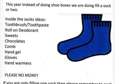Fill a Sock Appeal - Leek