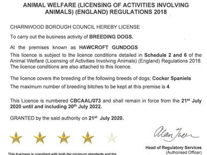 Animal Activity Licence
